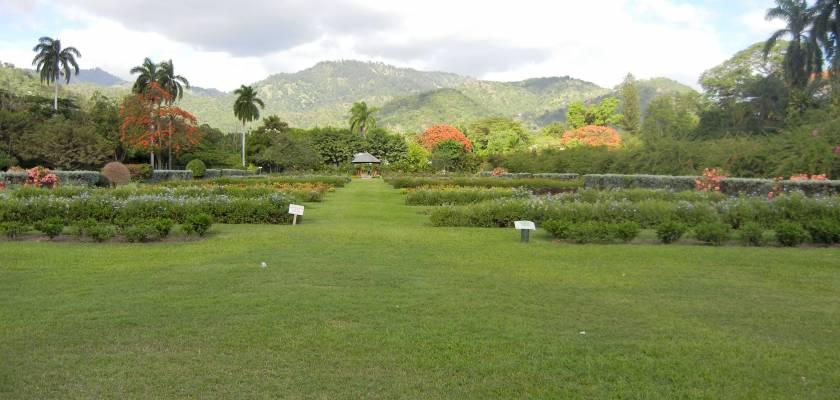 Royal Hope Botanical Gardens Moon Jamaica