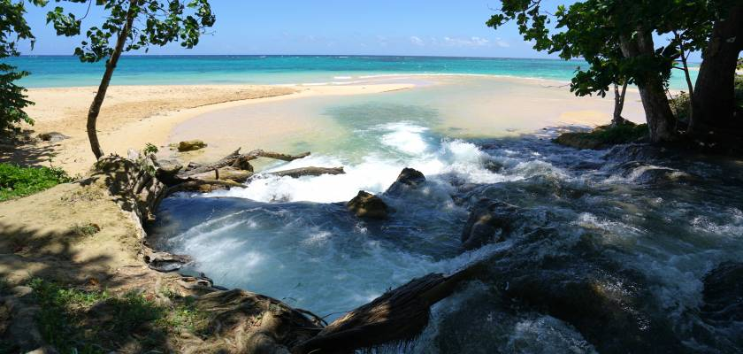 Image result for river meets sea jamaica